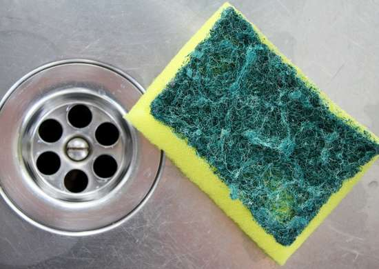 Cleaning A Sponge In Microwave
