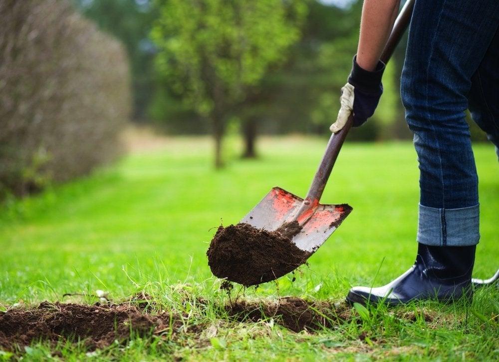 Digging near underground utility lines