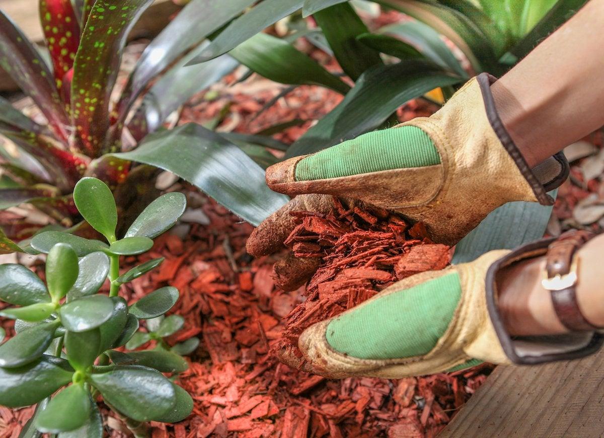 Garden erosion mulch