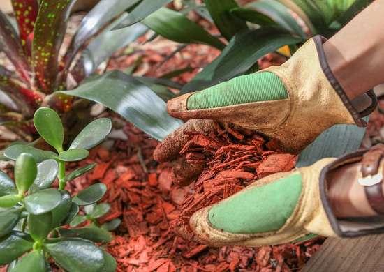 Prevent Garden Erosion with Mulch