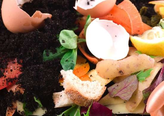 Compost soil structure