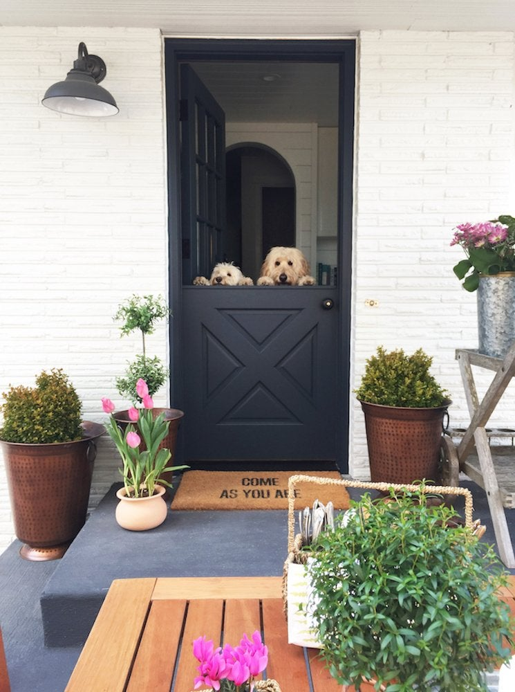 Black dutch door