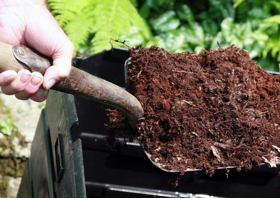 Putting Wine In Compost