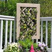 Latticed Vertical Garden