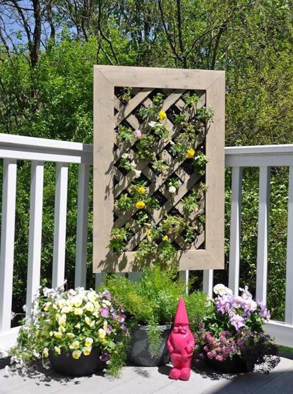 Latticed Vertical Garden