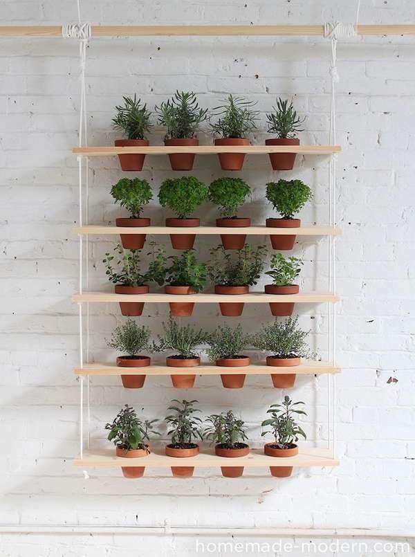 Terra Cotta Hanging Planter