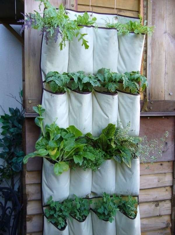 Pocket Organizer Vertical Garden