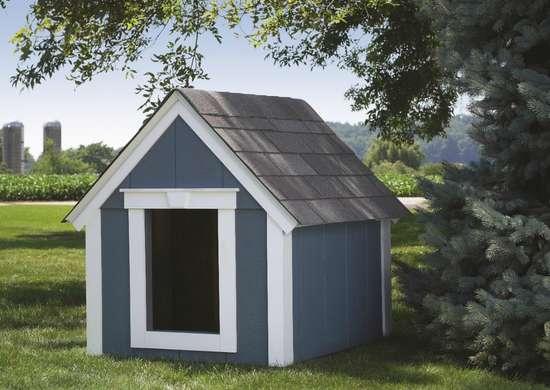 Adorable Doghouse