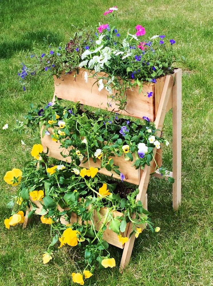 3 tier plant