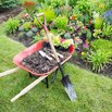 Free Plants from Municipal Landscaping Projects