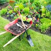 How to Create a Rain Garden