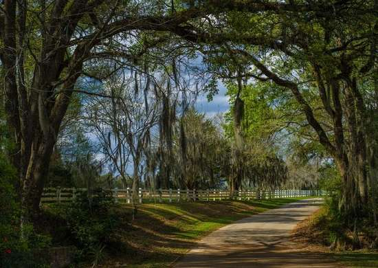St francisville louisiana