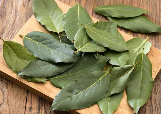 Bay Leaves And Bugs