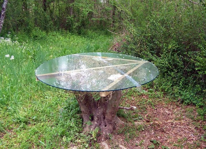 Tree Stump Glass Table