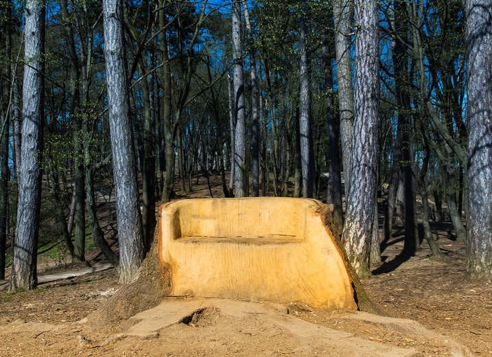 Tree Stump Bench