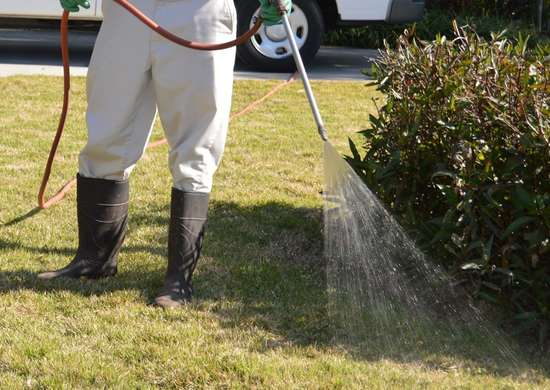 How to Dispose of Lawn Chemicals