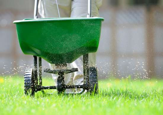 How to Fertilize Lawn in Fall