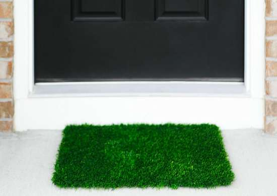 Astroturf Doormat & Astroturf Doormat - Best Doormats: 10 Affordable Options for Your ...
