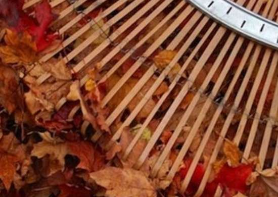 Believejay.blogspot leaf rake