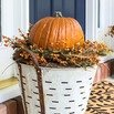 Pumpkin Display Ideas