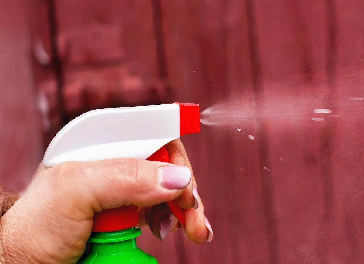 Ant spray