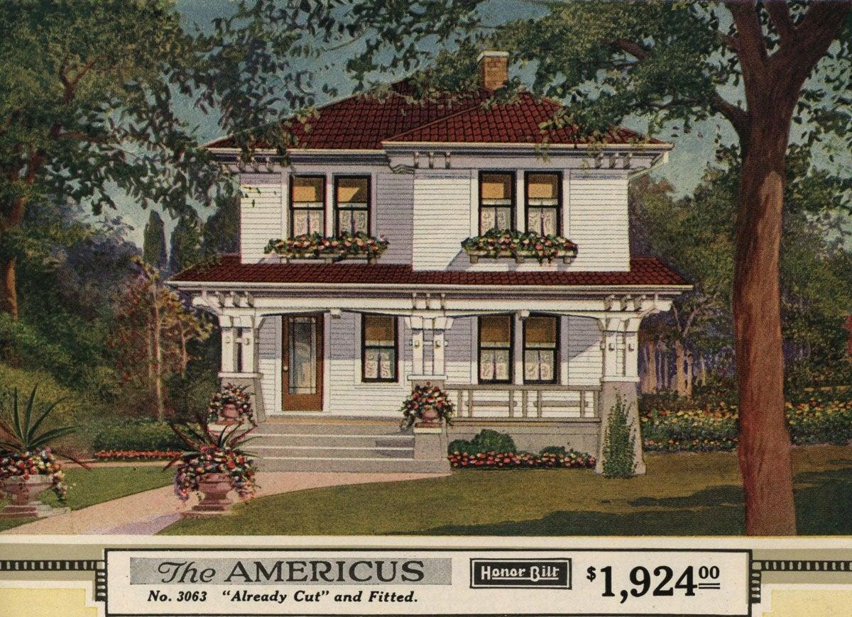 Sears americus