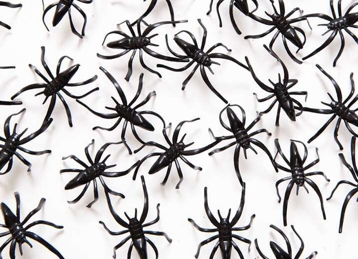 Realistic Plastic Spiders