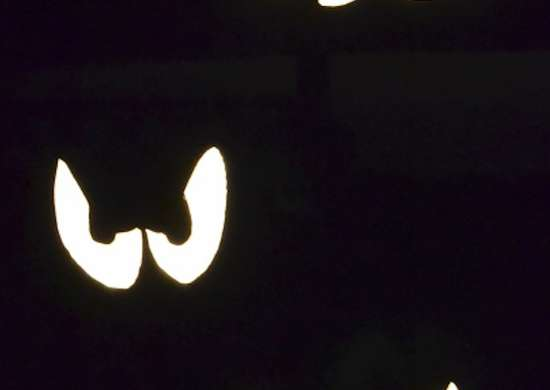 Halloween Eye Decorations
