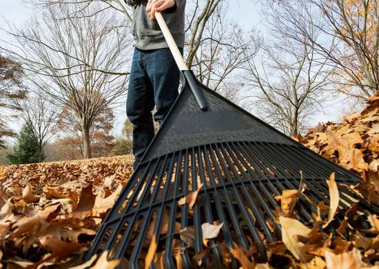 How to Choose a Rake
