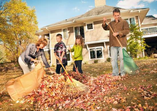 Use Tarps When Raking Leaves