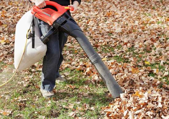 Yard Vacuum for Raking Leaves