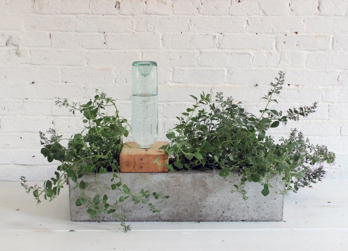 Concrete selfwatering planter