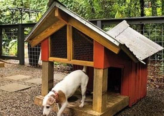 Doghouse-with-deck-x