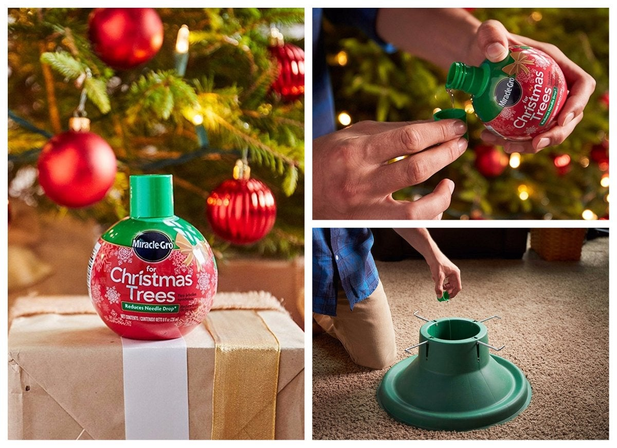 Miracle gro christmas tree