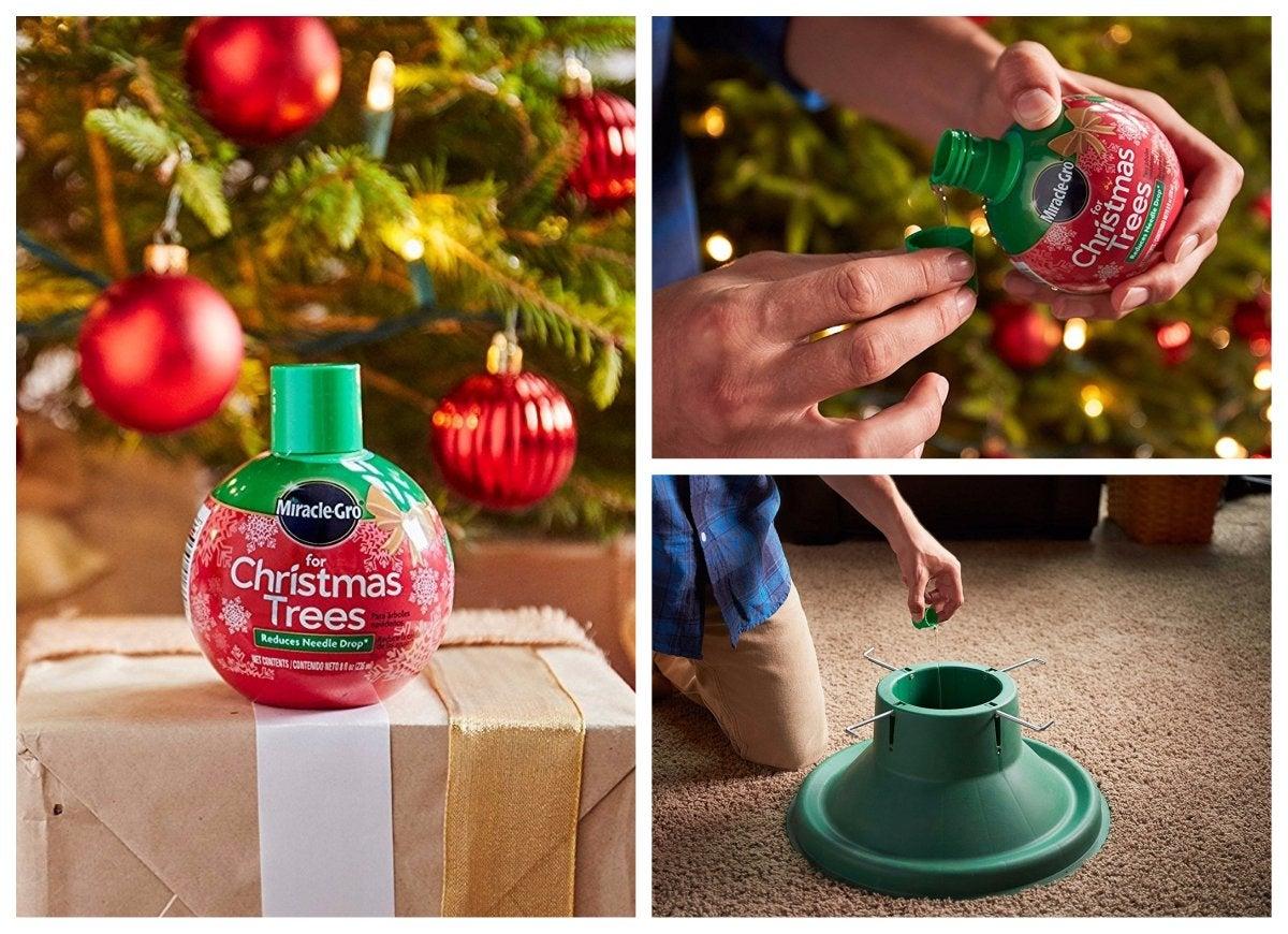Miracle gro christmas tree