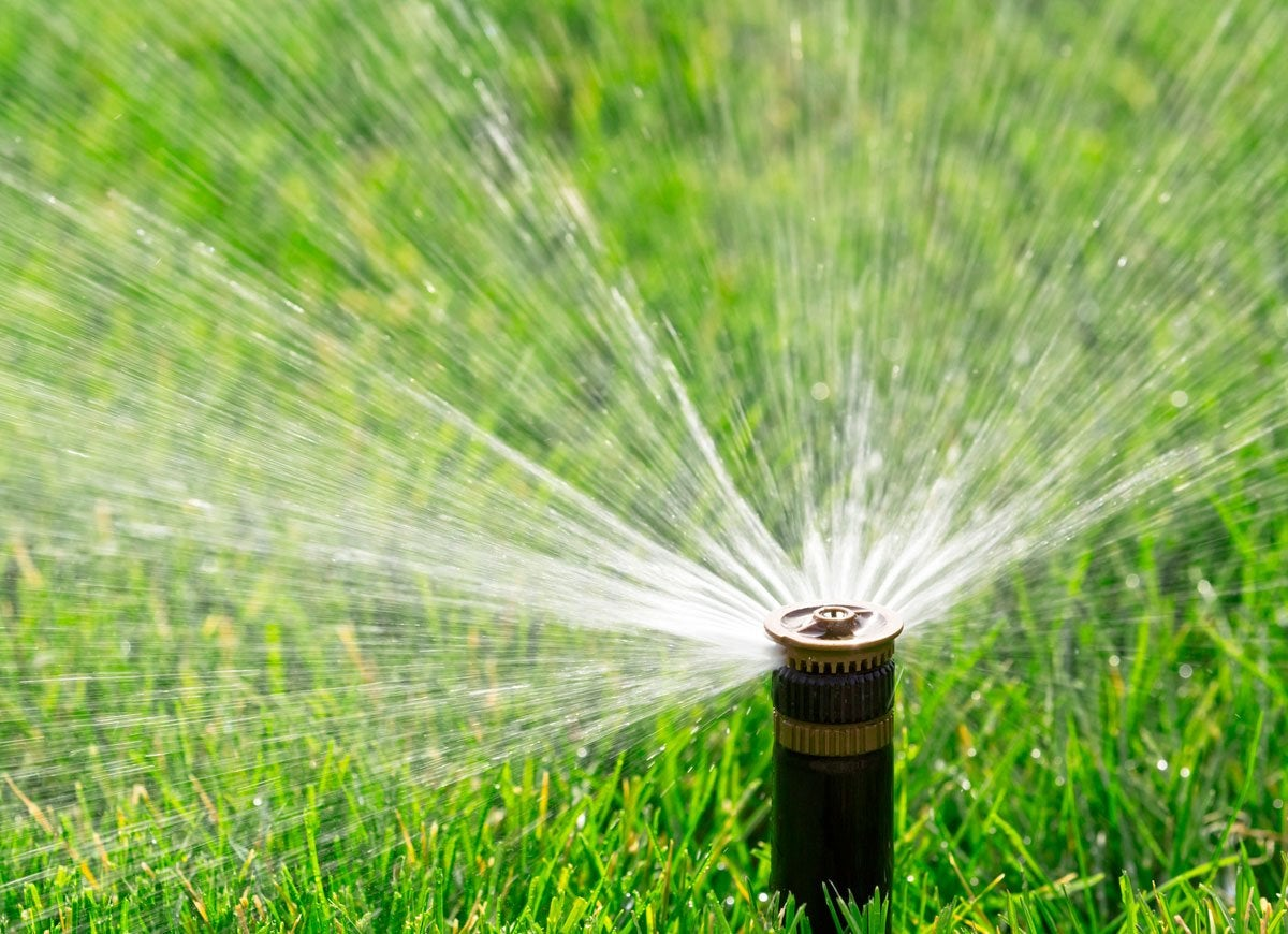 Sprinkler winter