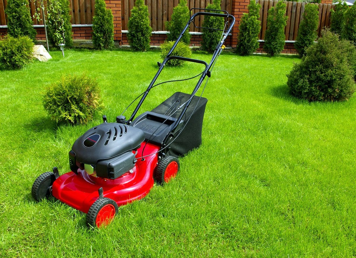 Lawn mower winter