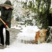 Don't Overstretch When Shoveling Snow