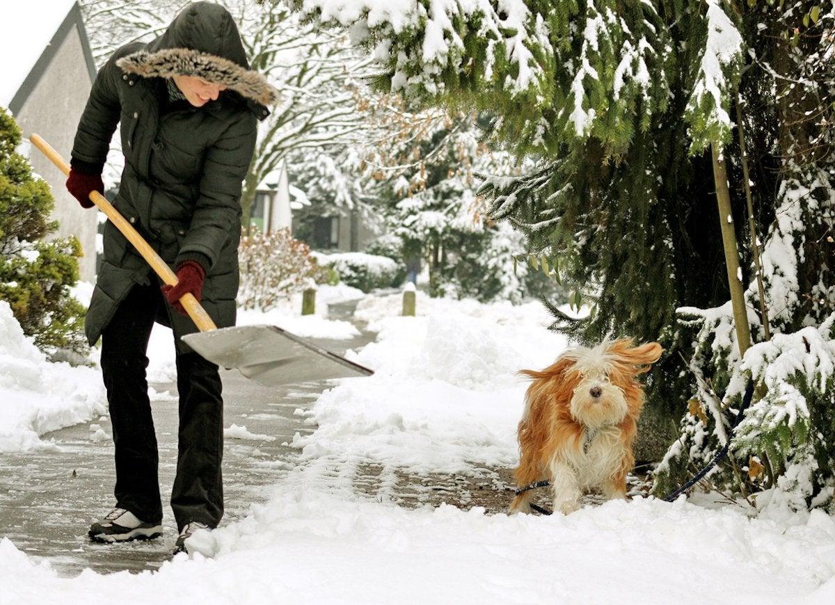Keep shovel close