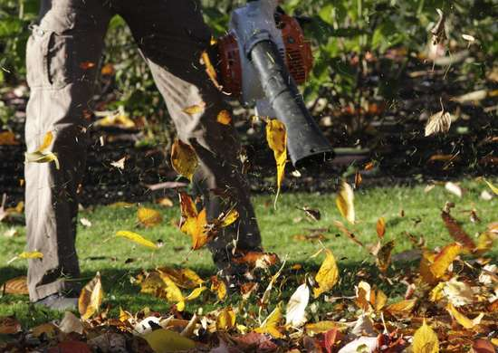 How to Save Money on Yard Work