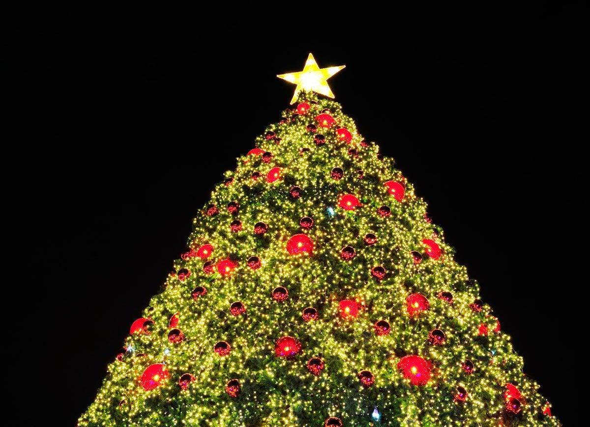 Xmas tree light