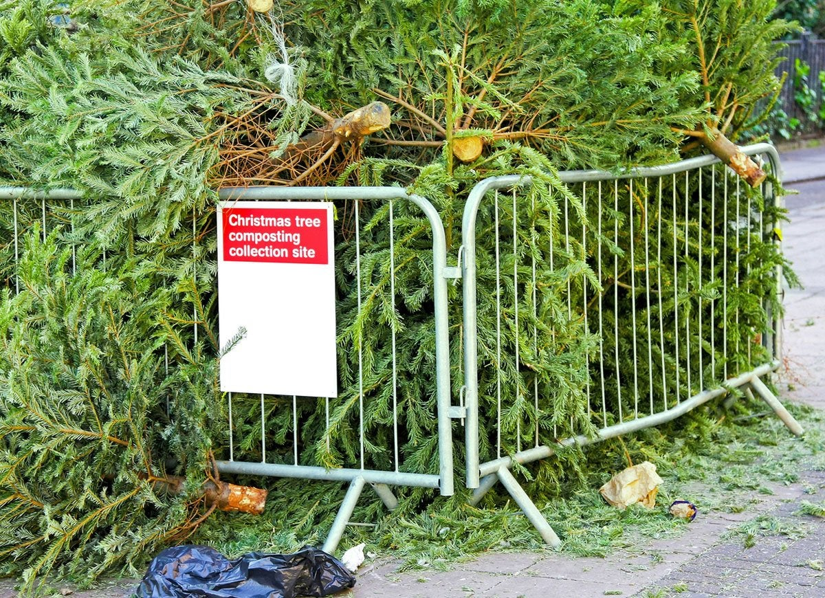 Jan 05, · Real Christmas trees will be taken away for recycling by refuse crews over the festive period. Residents should put trees next bins on normal collection dates, remembering to .