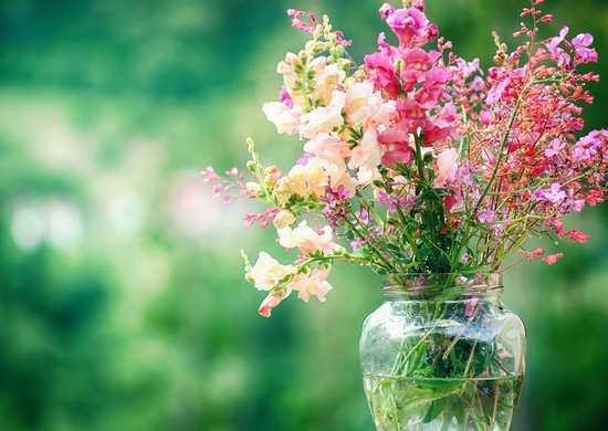 How to Keep Flowers Fresh Longer