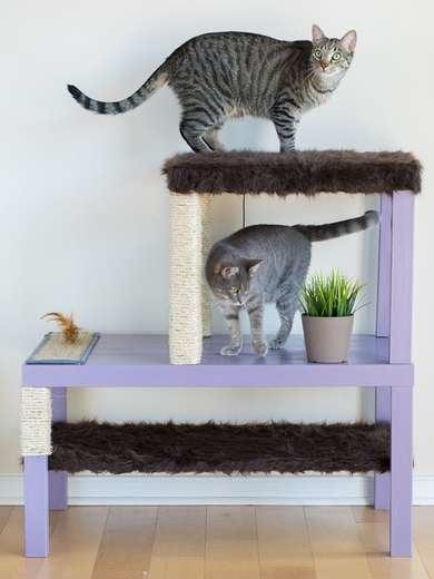 IKEA Cat Hack