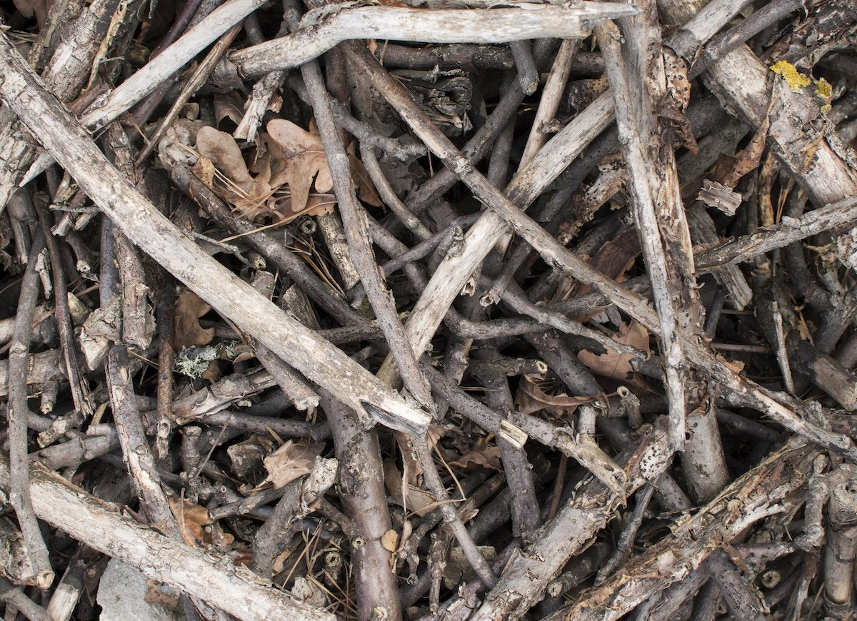 Burning brushwood