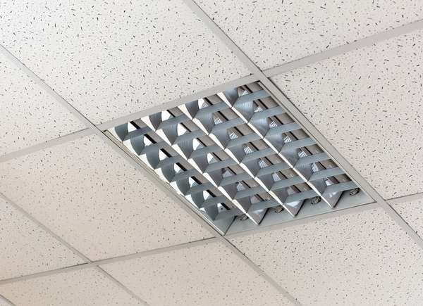 Mold On Ceiling Tiles