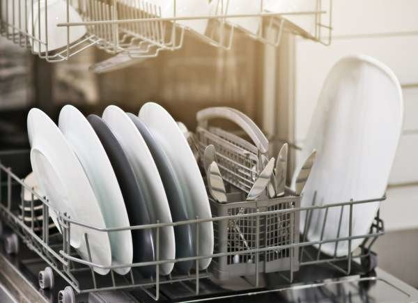 Mold On Dishes
