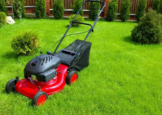 How to Prepare Lawn Mower for Spring