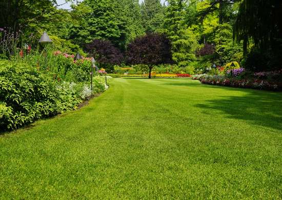 ROI for Landscaping