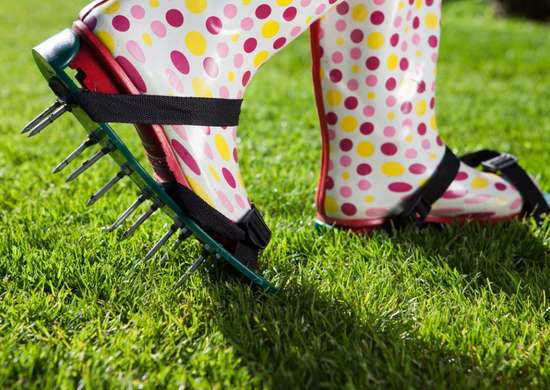 Walk your way to a healthier lawn.